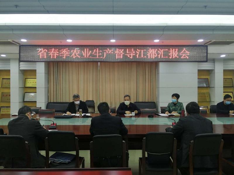 省yabo88app2019站督导扬州市春季农业生产